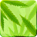 MaryJane Free Live Wallpaper by Kittehface Software