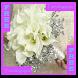Wedding Bouquet Flower by Rajaoloan