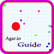 Guide for Agar.io Expert by Sikluk Android
