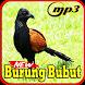 Kicau Burung Bubut Top Gacor Mp3 by Indo Barokah94