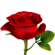 Rose Flower 3D by Trendyworks LLC