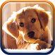 Cute Puppies Live Wallpaper by Cute Princess Apps
