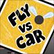 Fly vs. Car by Matthew White