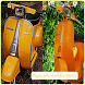 Idea of vespa modification PTS by diyoapps