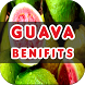 Guava Benefits by Health Info