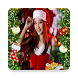 Christmas Photo frames HD by rubbs