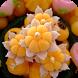 สูตรขนมไทย by danaiapp