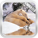 Polar Bear Video Wallpaper by Video Animated Live Wallpapers