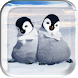 Dance Little Penguins LWP by Dominika Magic Wallpaper