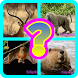 Learn English Animal For Kids by Calya Dev