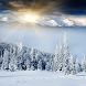 Winter Landscape Wallpapers by lad5mirs