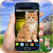 Cat on screen Cute Magic Touch Phone Prank by Free Apps Vallet