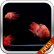 Red Fish Video Live Wallpaper by CharlyK LWP