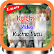 Video Kucing Lucu & Imut by Frenki Tahir