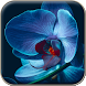 Orchid Wallpapers by Ojel
