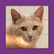 Cat Puzzles Extreme! Vol. 1 by Outcry Studios