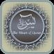 Surah Yassin by Aidid Alfian
