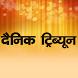 Dainik Tribune Hindi Newspaper by Readwhere.com
