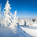 Winter Wallpapers by lad5mirs