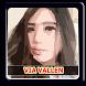 Lagu VIA VALLEN - JARAN GOYANG by Buloger