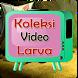 Koleksi Video Larva by Frenki Tahir
