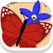 Butterfly Garden by KeyGames Network B.V.