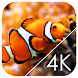 Underwater World Live WP by Crazy Bill