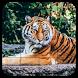 Tile Puzzles · Wild Animals by Thomas Fuchs-Martin
