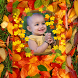 Autumn Photo Frames by App Developer studio