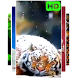 Snow Tiger Live Wallpaper by BenjiBenison
