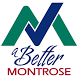 A Better Montrose by Accela Inc.
