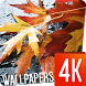 Leaves Wallpapers 4k by Ultra Wallpapers