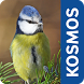 Gartenvögel by Franckh-Kosmos Verlags GmbH & Co. KG