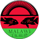 Malawi Cichlid by beeConnect srl
