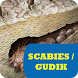 Obat Scabies Gudik by Nietzhee