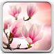 Magnolia Live Wallpaper by Creative Factory Wallpapers