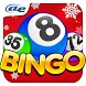 AE Bingo: Offline Bingo Games by AE Mobile Limited