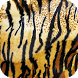 Animal Print Wallpapers by Dabster Software Solution