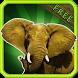 Animal Sounds for Kids Free by KookieKraft