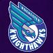 Knighthawks Light Show by Q Raider Technologies, LLC