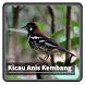 Kicau Suara Burung Anis Kembang by kangdeveloperstudio