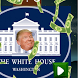 Slap Trump by LaGifle