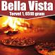 Bella Vista Pizza Gram by TakeAwaySystem