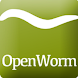 WormWorx by Dialectek