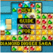 Guide for Diamond Digger Saga