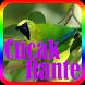 Kicau Master Cucak Rante Offline by Suto App
