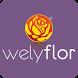 Welyflor WebApp