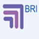 BRI Marketing Solutions by Reto Badraun