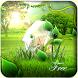 "Theme ""Magic Forest"" by Sophia Creighton"