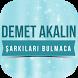 Demet Akalın-Şarkıları Bulmaca by Songs & Quizzes
